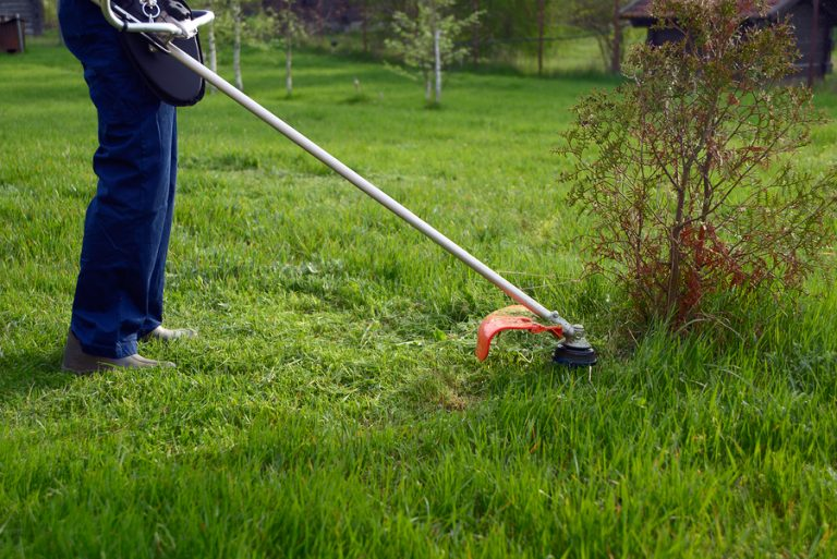Best 4 Cycle Weed Eater