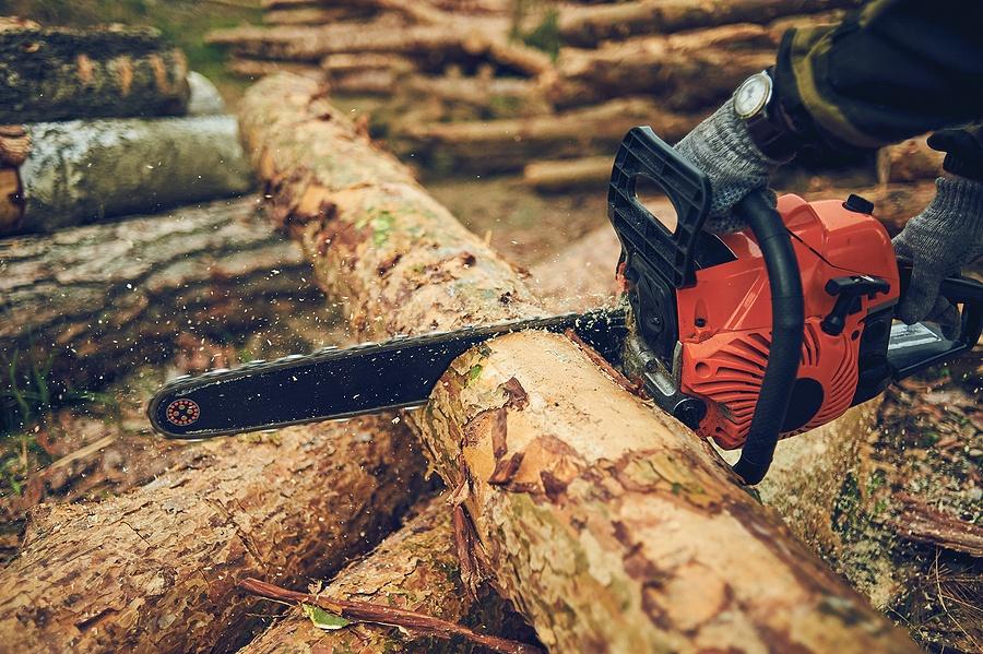 Chainsaw cutting
