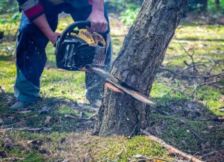 Why Does My Chainsaw Cut Crooked?